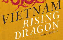 Vietnam: rising dragon (2020)